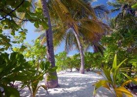 maledivy-hotel-filitheyo-island-resort-037.jpg