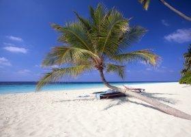 maledivy-hotel-filitheyo-island-resort-039.jpg