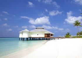 maledivy-hotel-kihaa-maldives-and-kihaa-luxury-collection-190.jpg