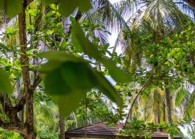 maledivy-hotel-palm-beach-004.jpg