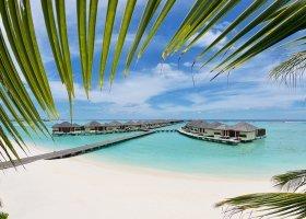 maledivy-hotel-paradise-island-resort-005.jpg