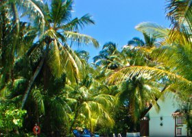 maledivy-hotel-ranveli-island-resort-017.jpg
