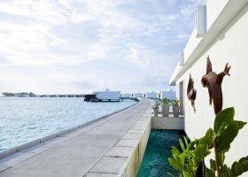maledivy-hotel-riu-palace-maldives-064.jpg