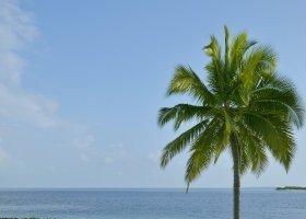 maledivy-hotel-royal-island-resort-spa-090.jpg