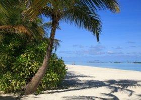 maledivy-hotel-summer-island-village-005.jpg
