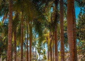 mauricius-hotel-shandrani-beachcomber-163.jpg