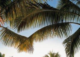 mauricius-hotel-victoria-beachcomber-225.jpg