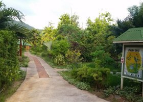 seychely-hotel-paradise-flycatcher-s-013.jpg