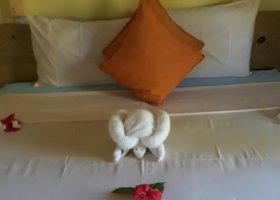 seychely-hotel-paradise-flycatcher-s-022.jpg