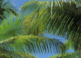 seychely-hotel-sainte-anne-resort-spa-059.jpg