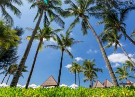 thajsko-hotel-angsana-laguna-045.jpg